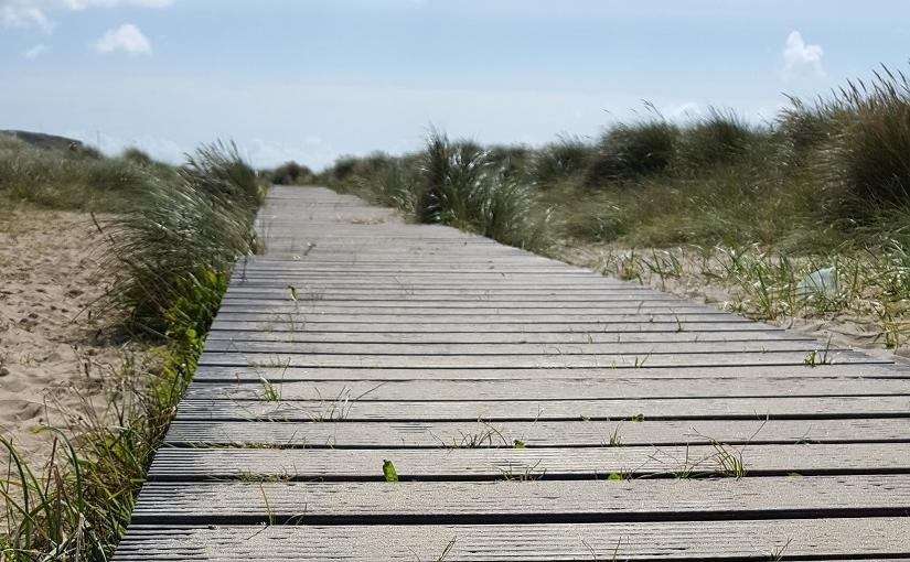 EbbSpark Boardwalk image