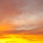 EbbSpark Fiery Sunset image