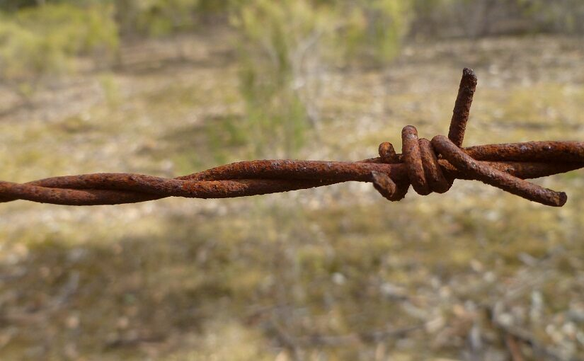 A twist of barbed wire set against fields