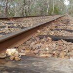 Railway line disappearing into a forest